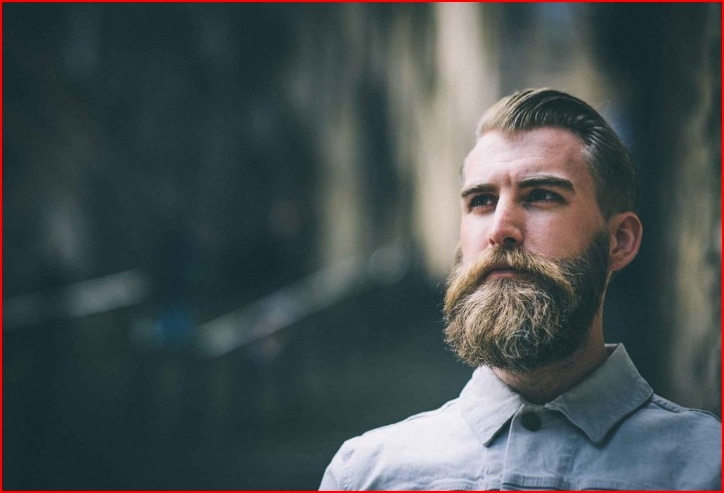 Hairstyles Braided Tips for a perfect beard