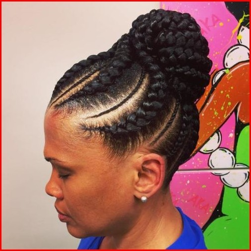 Hairstyles Braided Plaited Braids Hairstyles
